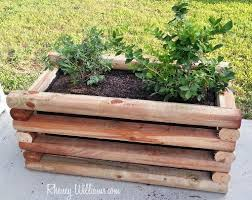 planter box for berries and other fruits
