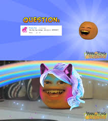 Know Your Meme Brony - orange a brony the annoying orange know your meme