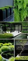 881 best garden design images on pinterest landscaping gardens
