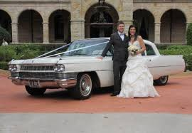 car hire mustang sydney mustangs wedding hire cars add a mustang to your