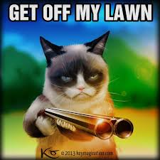 Get Off My Lawn Meme - 280 best get off my lawn images on pinterest ha ha funny stuff