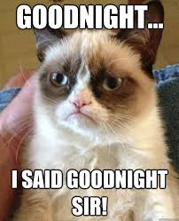 Goodnite Meme - goodnight cat meme cat planet cat planet