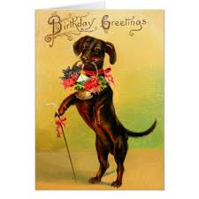 dachshund birthday cards greeting u0026 photo cards zazzle