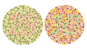 made by michael shea why being colorblind lets me see design more