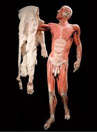 Bartholomew The Blind Man Morbid Anatomy The Art And Anatomy Of St Bartholomew Guest Post