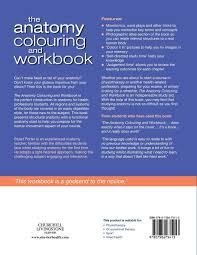 Anatomy And Physiology Coloring Workbook Chapter 16 Answer Key The Anatomy Colouring And Workbook 2e Amazon Co Uk Stuart B