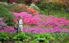 New York Botanical Garden Map by New York Botanical Garden For Romantic Nature U2014 Jrrny