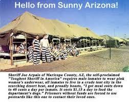 Arizona Memes - sheriff joe arpaio in 13 memes the grasshopper