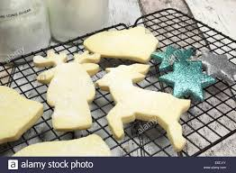 baking homemade christmas shortbread cookie biscuits in reindeer