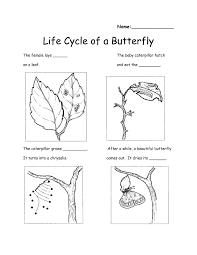 free free worksheet for grade 1 science my free printable