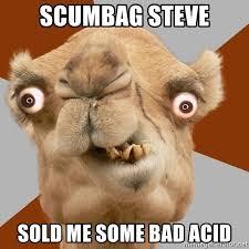 Scumbag Meme Generator - scumbag steve sold me some bad acid crazy camel lol meme generator