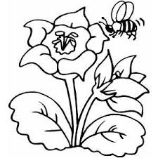 flower coloring pages stunning flower coloring book pages