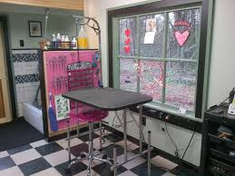 dog grooming tables for small dogs 174 best grooming setup products art images on pinterest dog