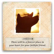 dog condolences pet sympathy card messages