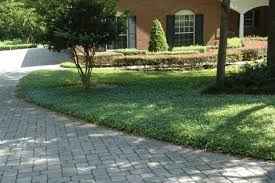 Backyard Ground Cover Options How To Create A Low Maintenance Yard Patio U0026 Lawn Ideas