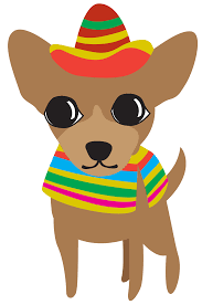 margarita cartoon transparent chihuahua clipart sombrero pencil and in color chihuahua clipart