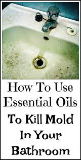 best 25 how to kill mold ideas on pinterest cleaning mold diy