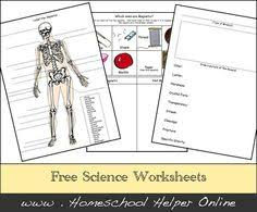 light and reflection physical science worksheets and science
