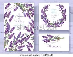 lavender wedding invitations vector wedding invitations set lavender flowers stock vector