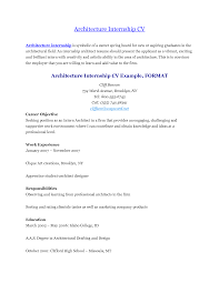 apprentice chef career objective chef resume example personal