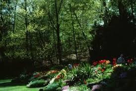 Landscape Mounds Front Yard - how to make landscape mounds home guides sf gate