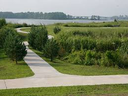 Landscaping Jacksonville Nc by Jacksonville Nc Official Website Parks