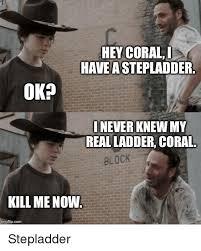Hey Carl Meme - hey coral i have astepladder ok never knew my realladder coral