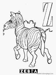 zebra color page image gallery for realistic baby zebra coloring pages realistic