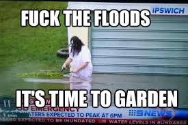 Australian Meme - australian memes