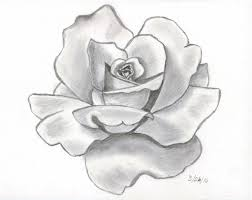 pencil drawing flower rose how to draw a rose bud rose bud step