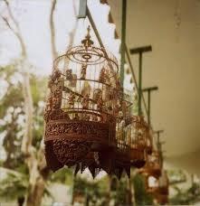 Bird Cage Decor 25 Unique Bird Cage Decoration Ideas On Pinterest Bird Cages