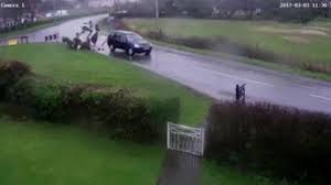 two horses involved in a horror crash captured on shocking video