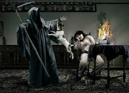grim reaper with pitbull wallpapers wallpapersafari