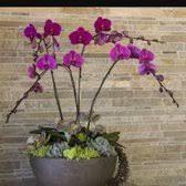 burlington florist burlington florist 23 photos 10 reviews florists 55 winn