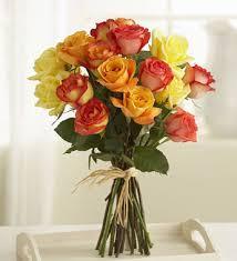 multi colored roses multi colored roses multicoloredroses
