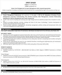 professional manager resume marketing manager resume examples