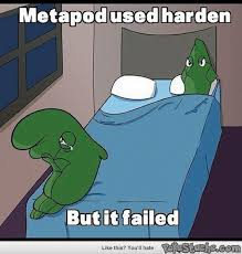 Pokemon Funny Memes - im sure pfizer will be able to help you one day lol pinterest