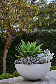 Potted Plants For Patio Planter Peter Fudge Potted Plants Patiopatio Best Planters Ideas