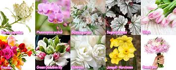 wedding flowers list top 10 wedding flowers by months list of bridal flowers by months