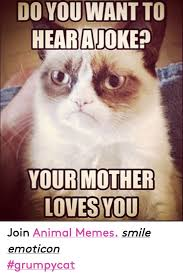 25 Best Memes About Grumpy - 25 best memes about meme animals grumpy cat and love meme