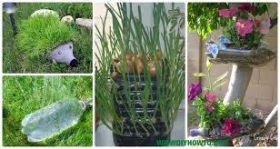 Bottle Garden Ideas Diy Plastic Bottle Garden Projects Ideas Picture