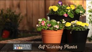 Self Watering Planters by Video Benefits Of Self Watering Planters Southern Patio