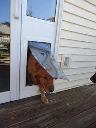 Dog Patio Maxseal Insulated Patio Pet Doors