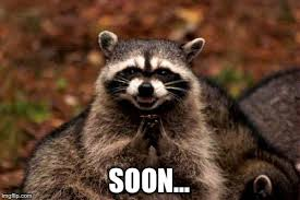 Meme Soon - evil plotting raccoon meme imgflip