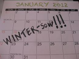 what to winter sow and when great list i love winter sowing