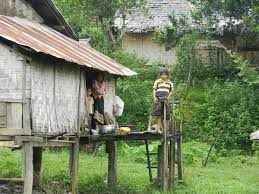 ancient roots of thai culture brian holihan
