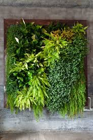 green walls are in great demand try our artificial version