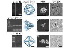 Dna Model Origami - automating dna origami opens door to many new uses mit news