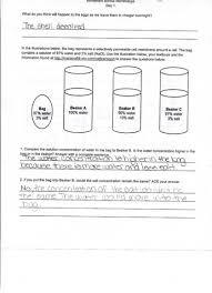 movement across membranes student worksheet betterlesson