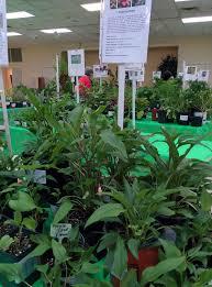 plant sale saturday may 6 u2013 tulsa perennial club
